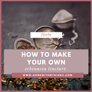How To Make Your Own Echinacea Tincture