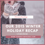 Our 2015 Winter Holiday Recap (Slideshow)