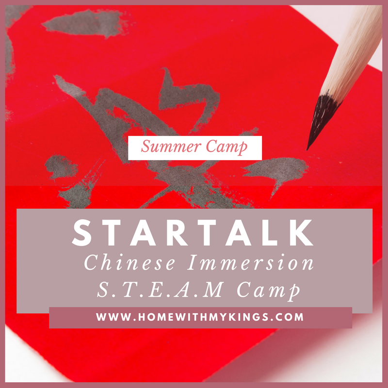 Summer Camp Review: STARTALK Chinese STEAM Camp 2017