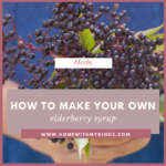 How to Make Your Own Elderberry Syrup